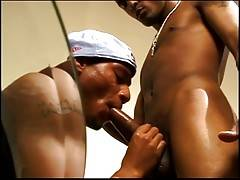 After having his cock well and truly serviced by that saliva-laden mouth of Mickey`s, Sexcyone bends his new buddy over the couch and plows him hard for the camera, giving him a taste of why we love him so much.